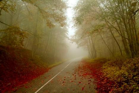 roads-007