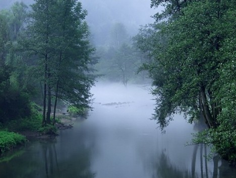 nature_photography_017