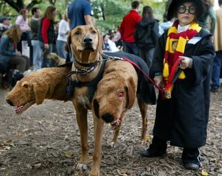 cane... harry potter