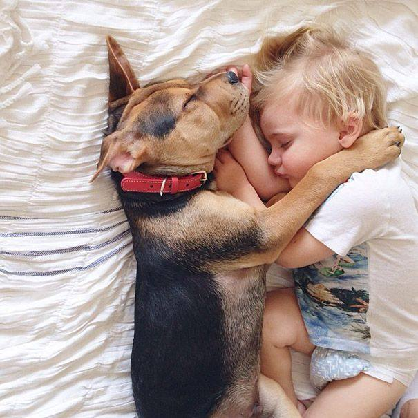 Risultati immagini per cani e bambini