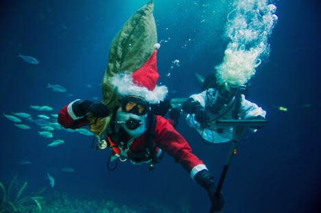 Diving Santa Claus at Ozeaneum