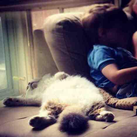 funny_animals_04280_007