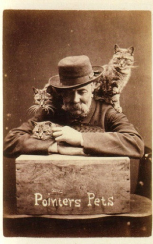 Funny Animal Photographs of The Early of The 19th Century (7)