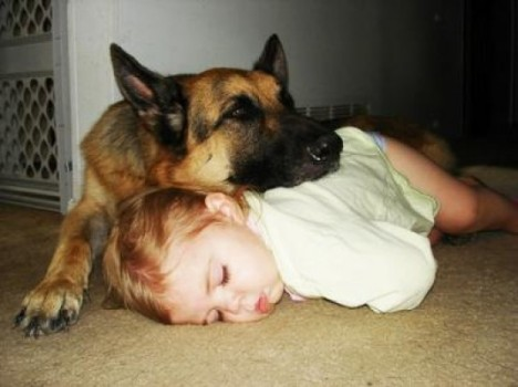 dormire-con-cane-e1305111551438