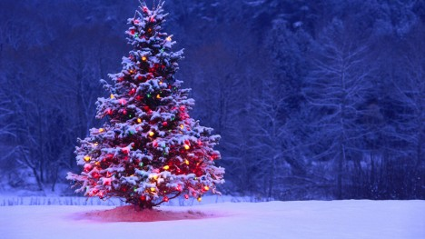 Christmas-Tree-HD.jpg