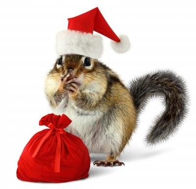 15077935-chipmunk-in-cappello-rosso-di-babbo-natale-e-sacchetto-con-i-regali-su-sfondo-bianco