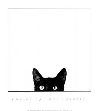 B1089~Curiosity-Posters