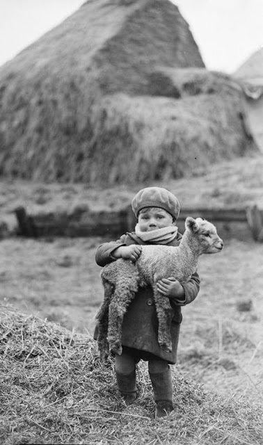 Children with Their Lovely Pets (4)