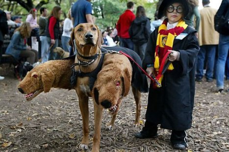 Costume-Harry-Potter-Carnevale