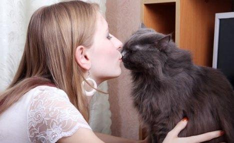 gatto-baci