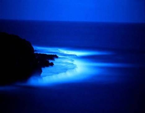 mare blu di notte.jpg
