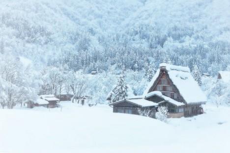 winter-snow-nature-1640481-1600x1067__880-720x479