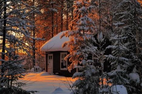 winter-sunset-trees-842837-1280x849__880-720x477