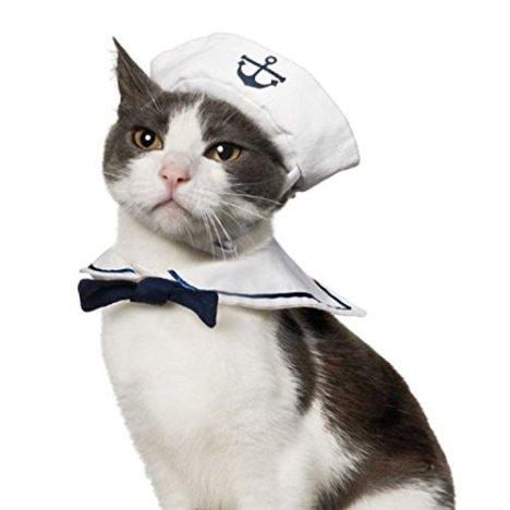 costume-carnevale-gatto-marinaio