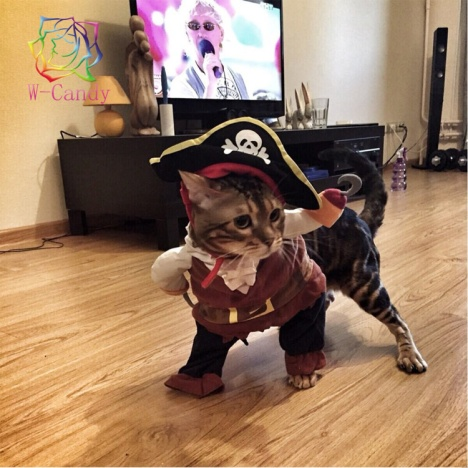 cute-cartoon-dog-funny-modelling-pirates-for-font-b-cat-b-font-dog-dress-suit-clothes