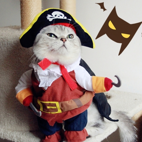 font-b-cat-b-font-and-dog-clothes-pirate-clothes-for-dog-and-font-b
