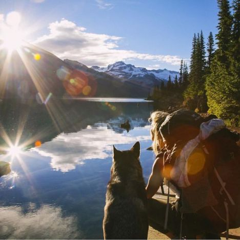camping-with-dog-ryan-carter-75__605