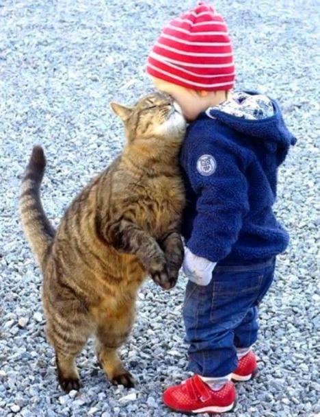 Gatti-e-bambini-3