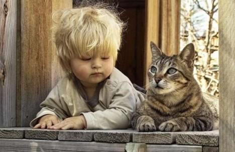 gatto-bambino-finestra.jpg