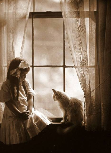 Marjorie Sholes with cat in the window Photo by William H. Manahan, Jr (early 1900s).