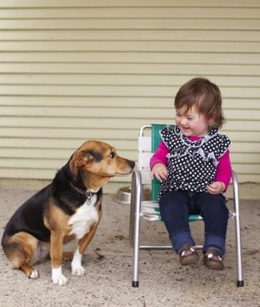 bambina-cane-364x430