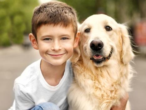 bambini-e-animali