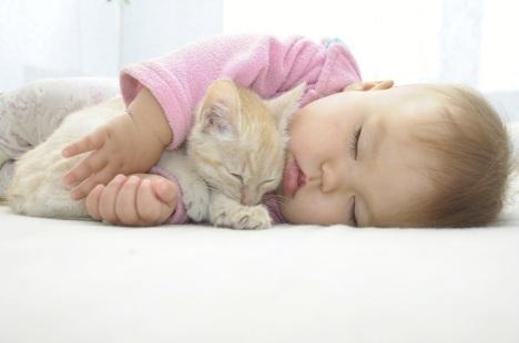 bambini-e-gatti